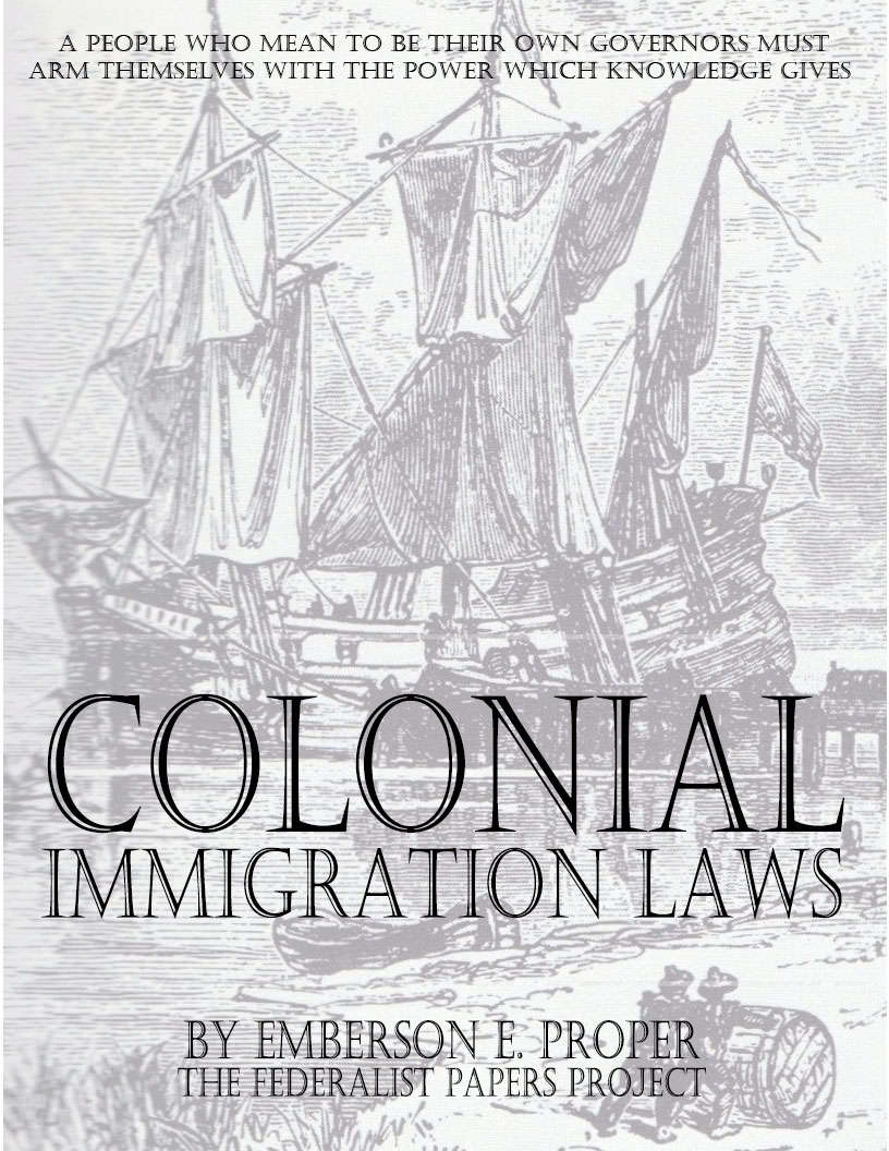 essay on immigration laws in the us
