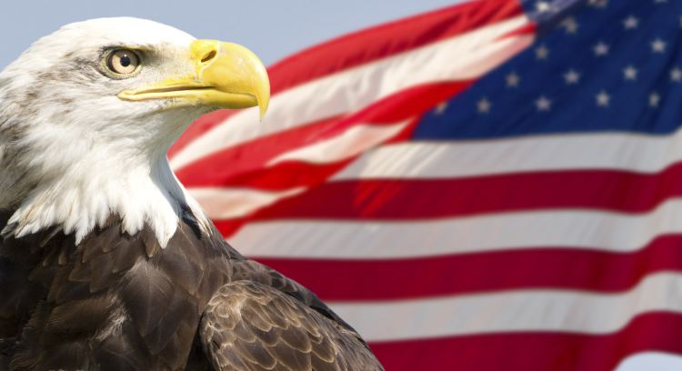American flag with a bald eagle