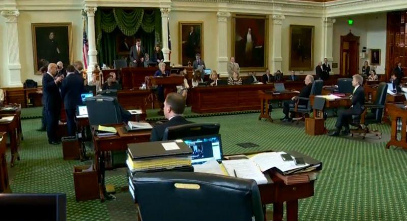 Texas legislature essays