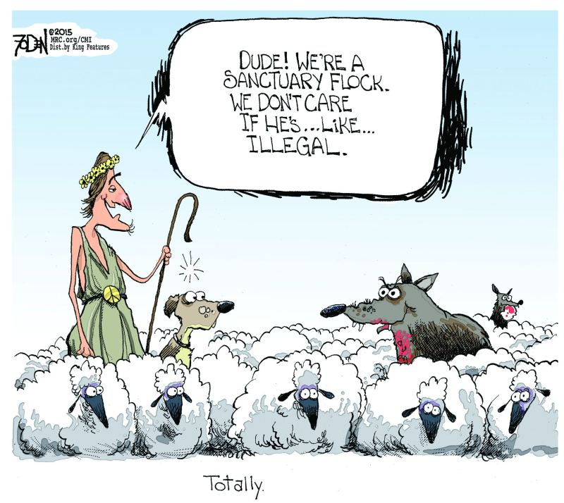 The Best Cartoon On Illegal Immigration We Have Ever Seen