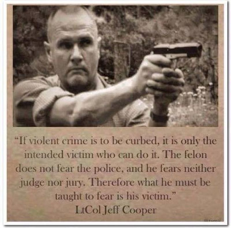 crime 500x492 new meme reveals truth about violent crime and self defense