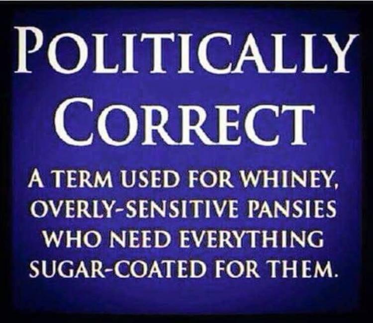 Essays on political correctness