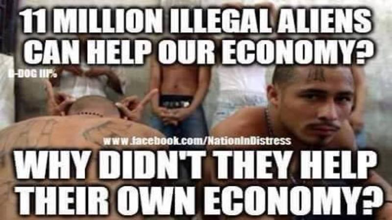 imageedit_1751_4062120698 meme asks brutal question about illegal aliens & the economy