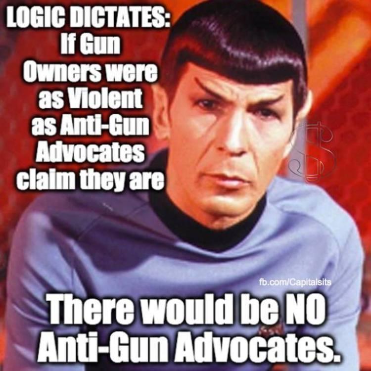 Obamas gun ban