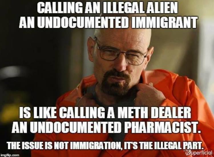 imageedit_1841_2409330502 meme destroys political correctness regarding illegals