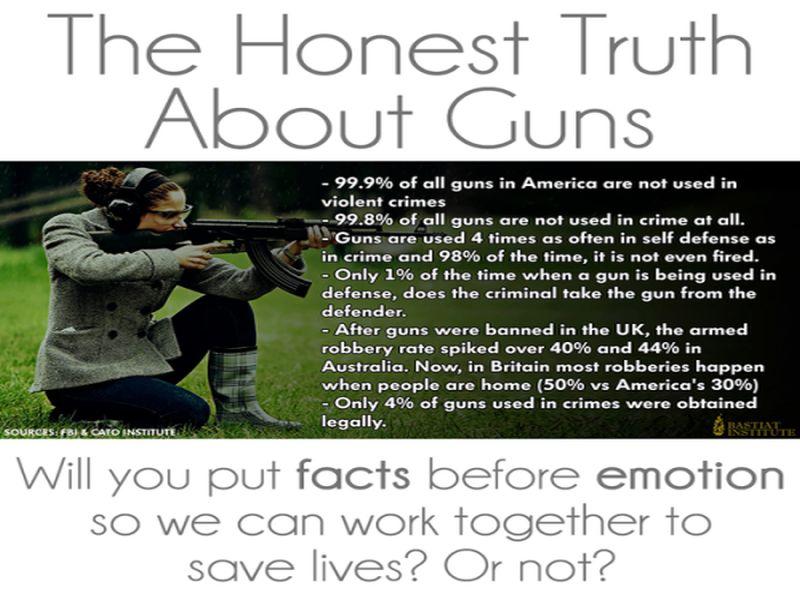an essay about gun control