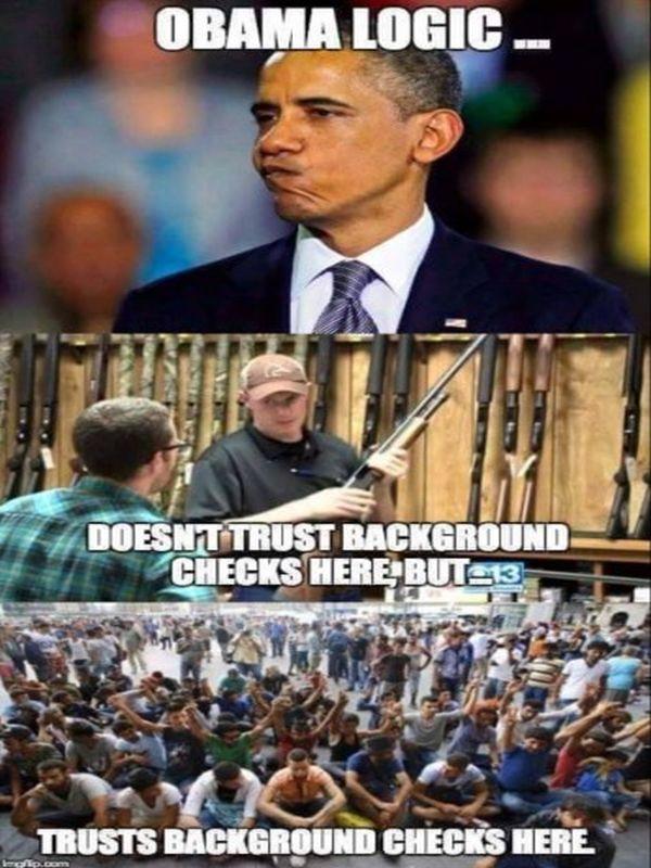 Patriotic Meme Brutal Meme DESTROYS O...