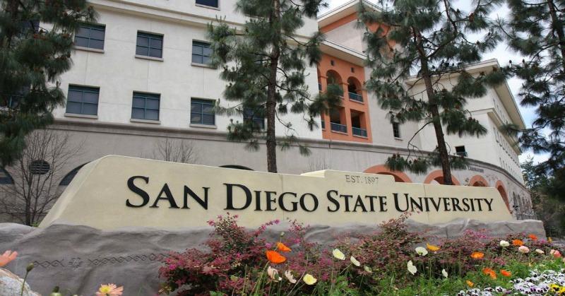 College essay help san diego