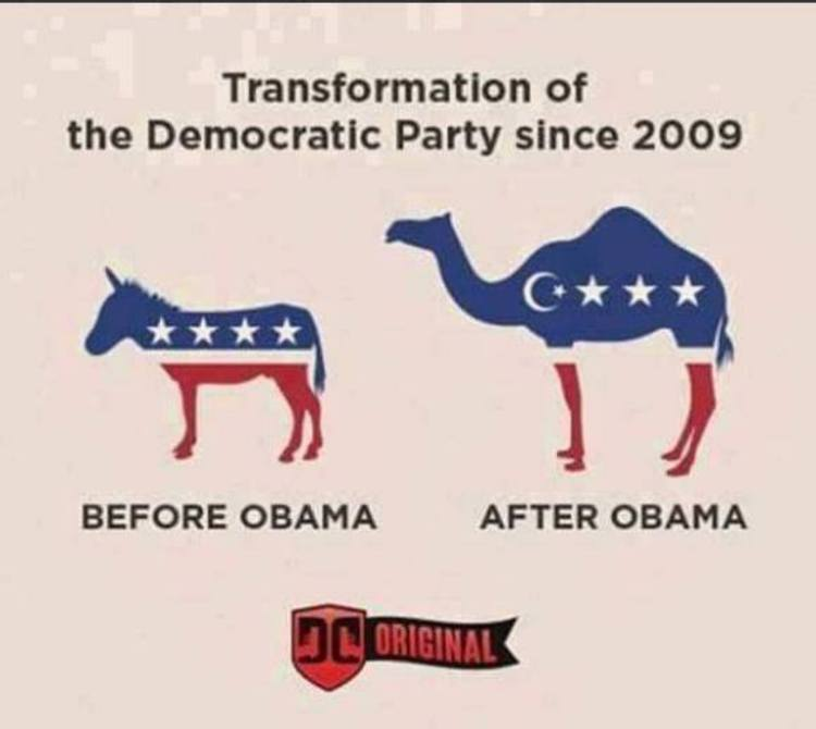 What did the democrats win