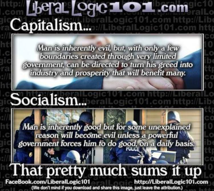 Capitalism Vs Socialism Brilliantly Compared Meme