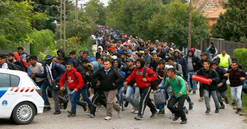 migrants-germany1