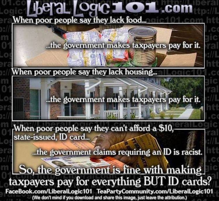 Brilliant Meme DESTROYS the Left's Narrative on Voter ID Laws