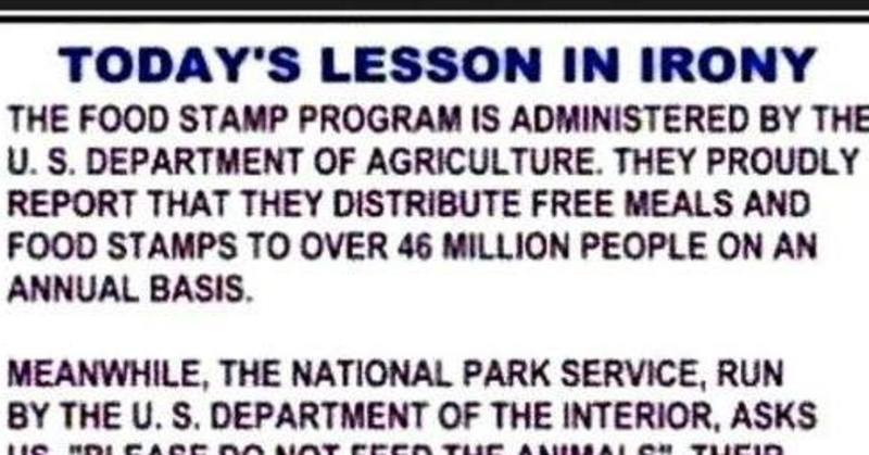the us government and welfare essay Read this sample essay on poverty to see the  the attention has also been placed on women on welfare  he placed emphasis on the role of government and.