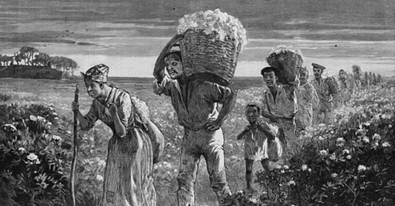 cotton slavery and the old south essay Slavery is the south essay #3 slavery played a dominating and critical role in much of southern life in the struggle for control in america, slavery was the south's stronghold and the hidden motive behind many political actions and economic statistics.