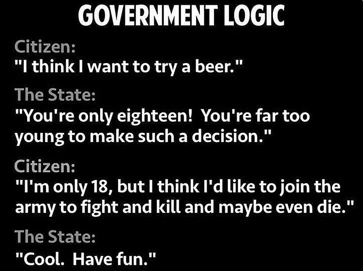 government logic age