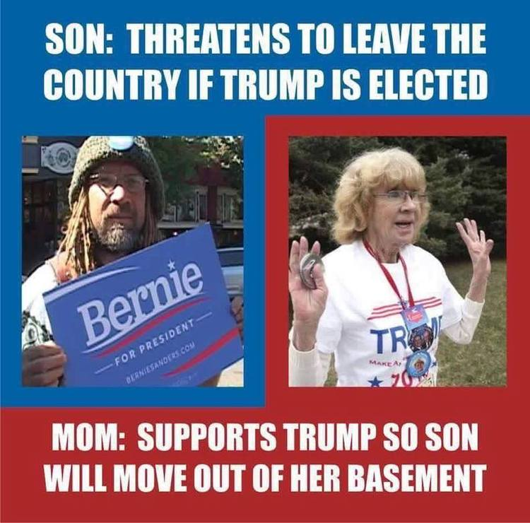 imageedit_1356_7495314717 hilarious meme reveals why this mom is voting for trump