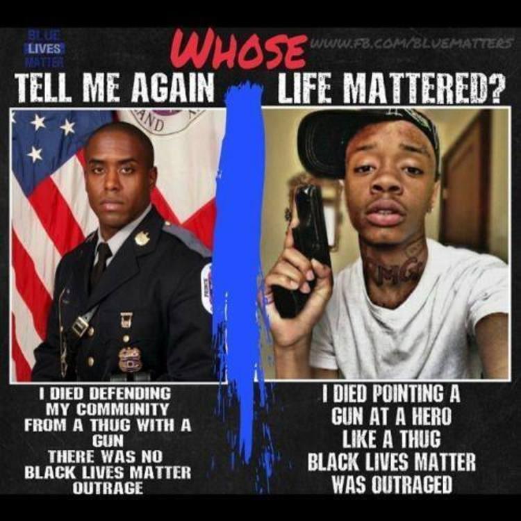 BRUTAL Meme Destroys the Black Lives Matter Movement