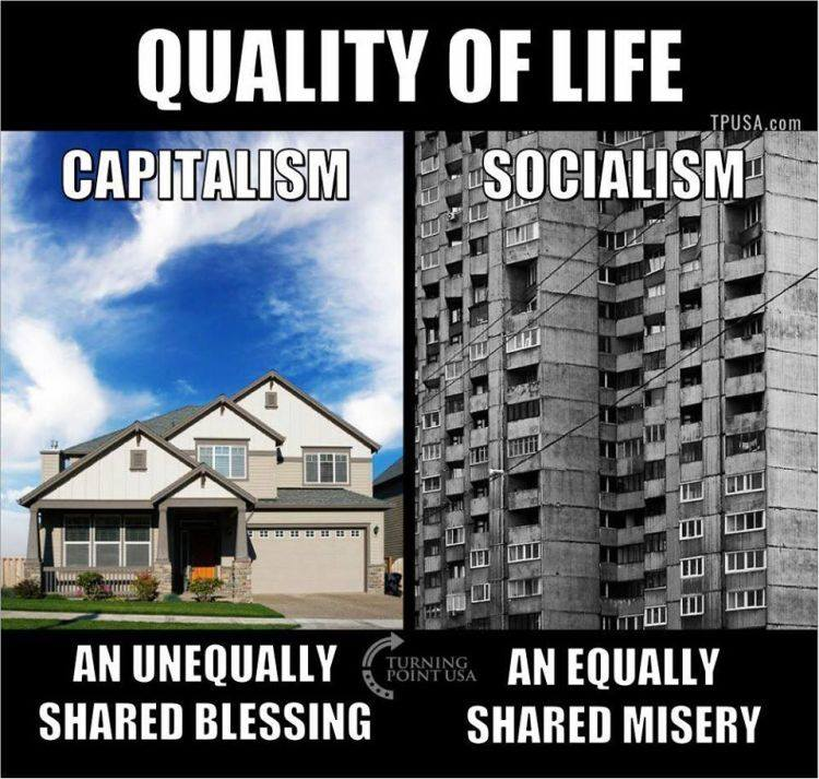 capitalism vs socialism on quality of life brilliantly