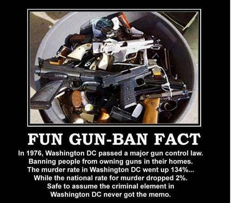 banning guns is not the answer gun control is And the answer is that while we might not be crazy, our gun reality is we may not be able to change the two centuries that brought us to where we are but it wouldn't hurt to imagine something.