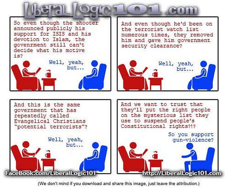 liberal gun control madness