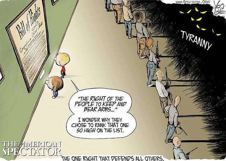cartoon reveals why nd amendment is so high on the list of rights