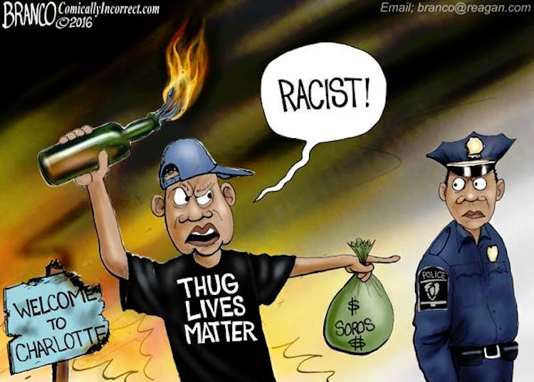 hypocrisy of blm rioters brilliantly exposed with one cartoon