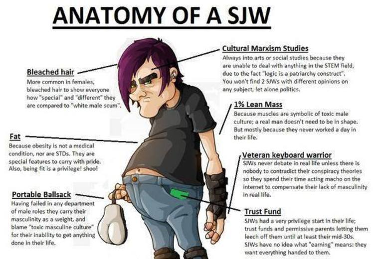 Anatomy of Social Justice Warriors Perfectly Illustrated