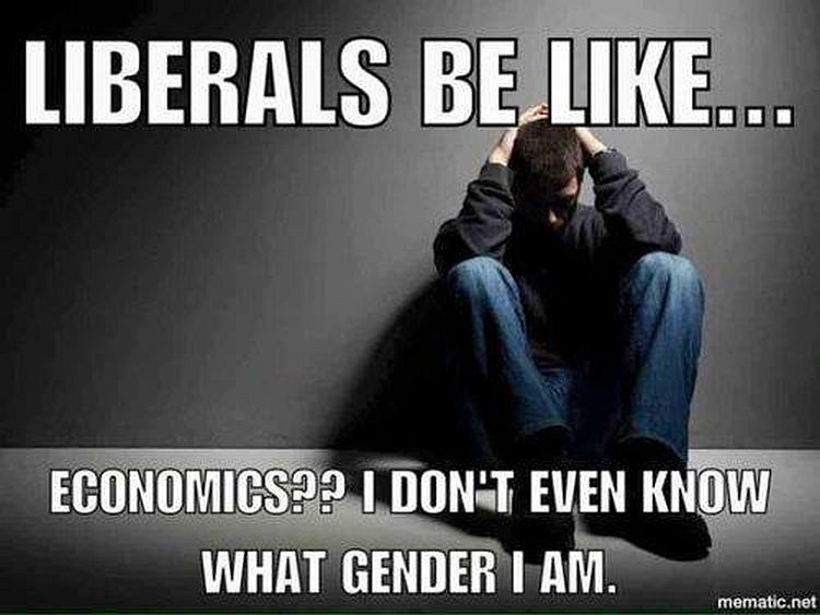 liberals-economics-gender.jpg