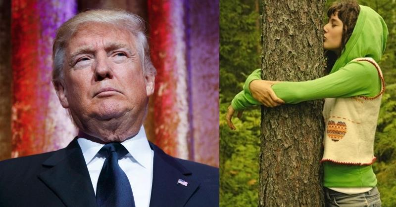 donald-trump-vs-liberal-tree-huggers
