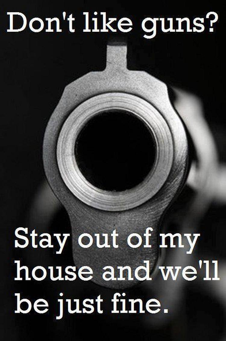 dont-like-guns