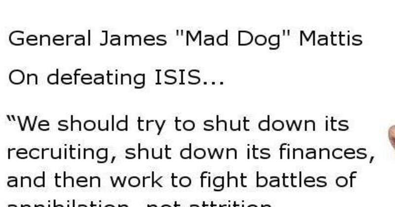 """an encounter with a mad dog essay To support these claims i will examine a well-known leader throughout the  military, general james """"mad dog"""" mattis this essayshow more content."""