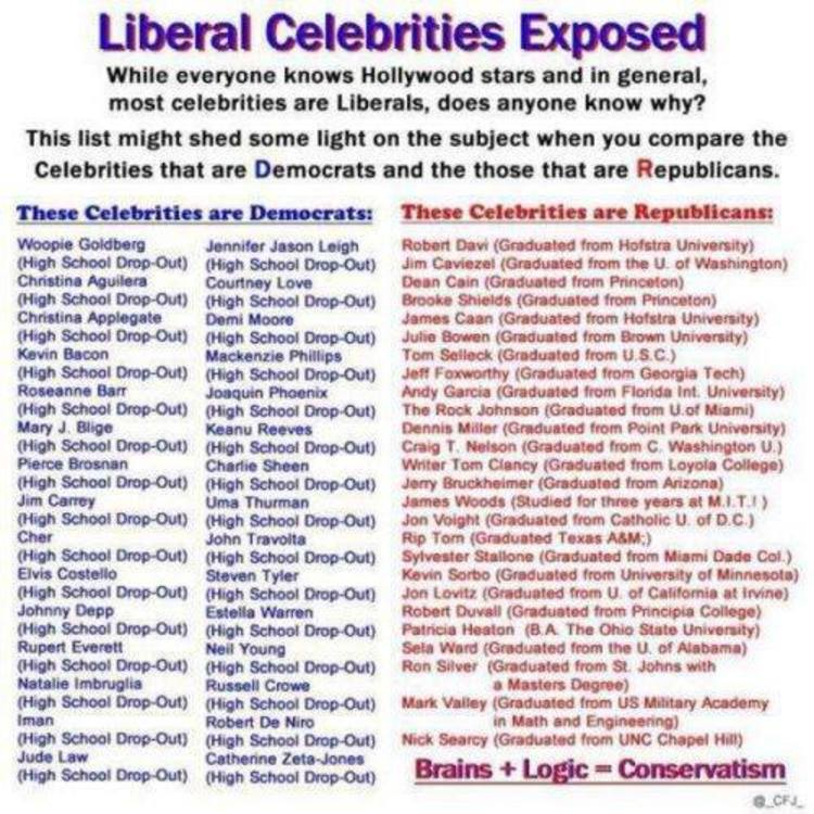 liberal conservative essays You see them on the tv, you hear them on the radio and sometimes you just want to throw them off a cliff yes they are conservatives and liberals.