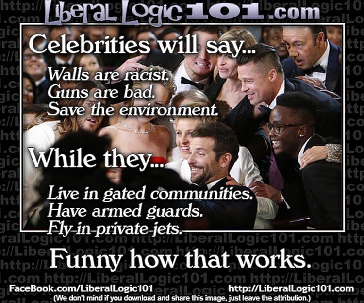 celebrity hypocrites