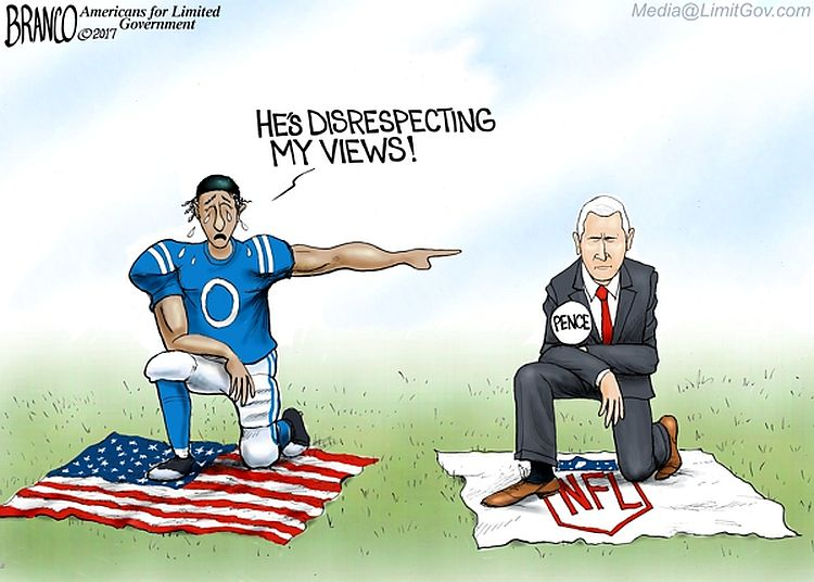 Nfl Kneelers Hypocrisy On Disrespecting Views Cartoon