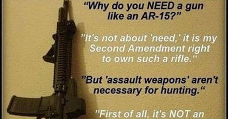 liberals love gun control essay