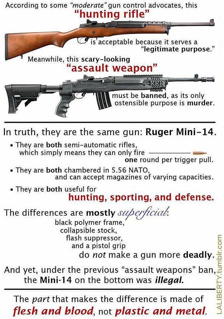 Hunting Rifles Vs Quot Assault Rifles Quot Explained For Dummies