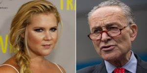 People Are Freaking Out After Discovering What Ancestry.com Says About Schumer Family History